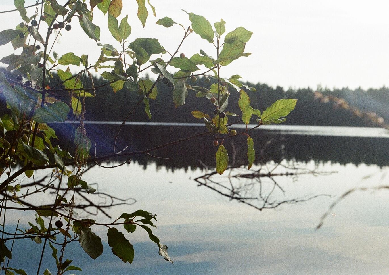 101-jezera
