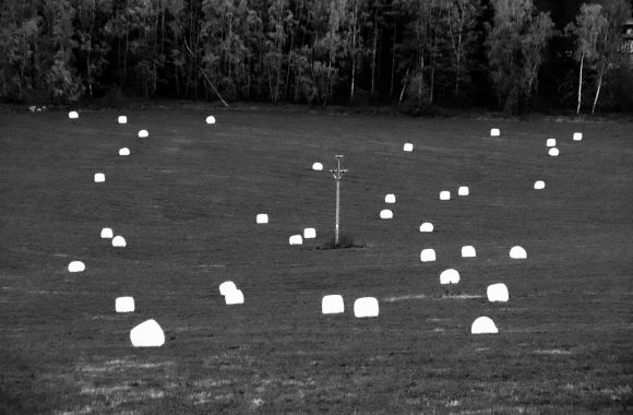 11/20 Lobendavský agro-land art